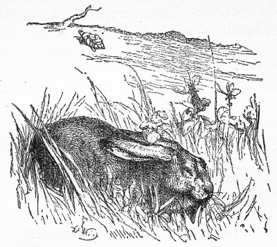 The Hare, trusting to his native swiftness, cared little about the race, and lying down by the wayside, fell fast asleep.